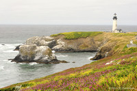 Yaquina Head Lighthouse, Newport, OR 100727-MK3-0788