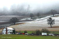 Snow-dusted farm landscape, Dundee Hills 120229-101314-Mk4-0332