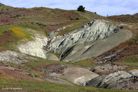 John Day Painted Hills, Clarno Unit 100516-MK3-5987