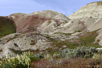 John Day Painted Hills, Clarno Unit 100516-MK3-5984